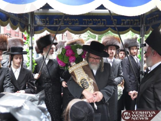 Photo Essay: Hachnasas Sefer Torah For The Shevat Halevy Shul In Williamsburg (Photos by JDN)