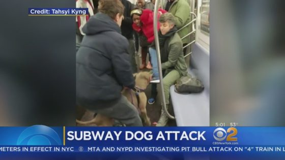FRIGHTENING: Pitbull Bites Woman During Argument On NYC Subway [VIDEO]